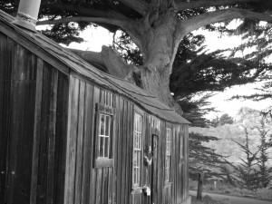 History Whaler's Cabin