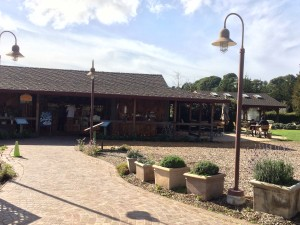 A view from the front of the Earthbound Farm Stand, an all-organic market and restaurant.